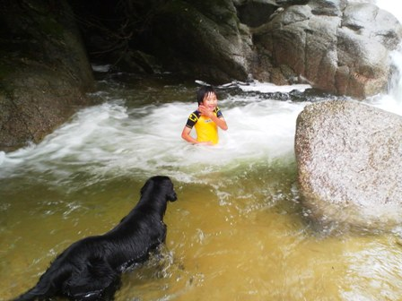 石水渓20100620-2