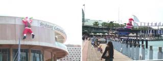 2011-11-15-1.jpg