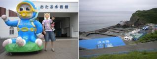tor2011-7-15-1.jpg