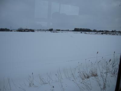 100313  雪景色