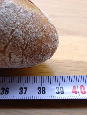 10.04.22バゲ_39cm