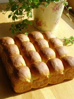 10.05.29カボチャのちぎりパン