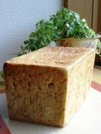 10.05.31ライフレーク食パン