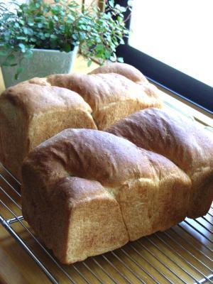 10.06.11全粒粉とヨーグルトの食パン