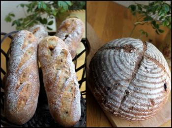 10.08.17全粒粉使用のパン