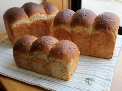 10.11.11えごま食パン