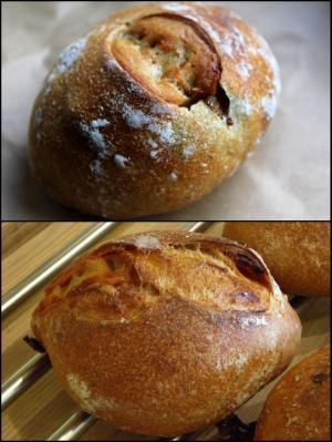 10.12.16カドナのパン2