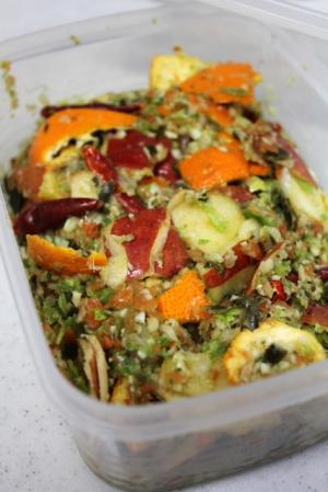 11.02.20野菜床