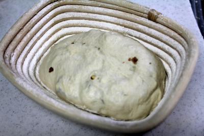 11.04.13アーラブルーチーズのカンパ_発酵カゴ