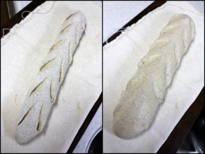 11.11.11ビール酵母のカンパーニュ_ホイロ前後