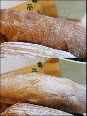 ビール種のパン・ド・カンパーニュ_なまこのん