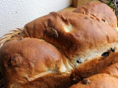 11.12.22レーズン食パン_トップ