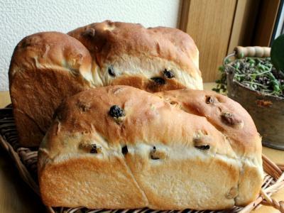11.12.22レーズン食パン