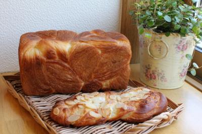 12.01.23デニッシュ食パン