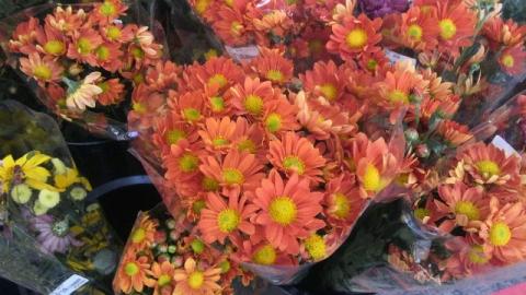 道の駅に出したスプレー菊の花束