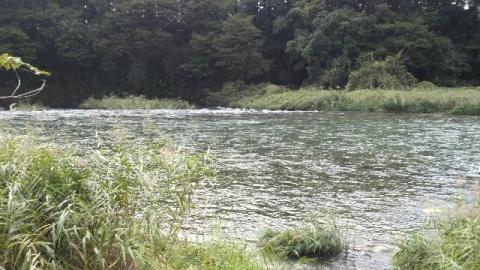 10月8日の那珂川鍋掛