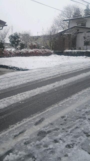 雪!積もっちゃった11月14日朝7時半頃