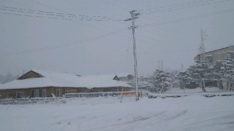 12月14日の雪景色ハーモニー