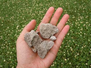 これが軟石?
