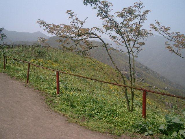 Lomas de Lachay 1