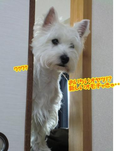 tatikawa5