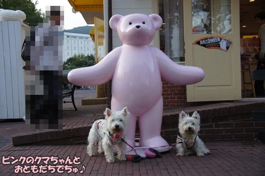 teddybear11