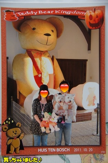 teddybear13