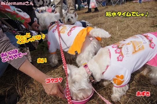 tachikawa15