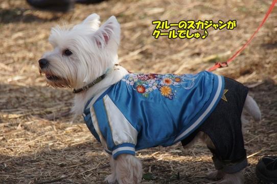 tachikawa21
