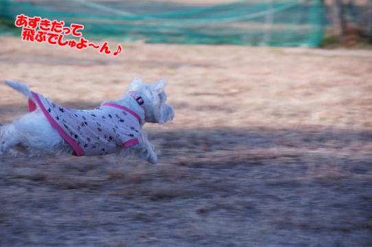 run15