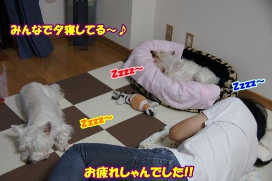 yuune2IMG5949.jpg
