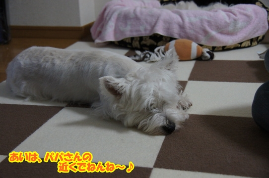 yuune1