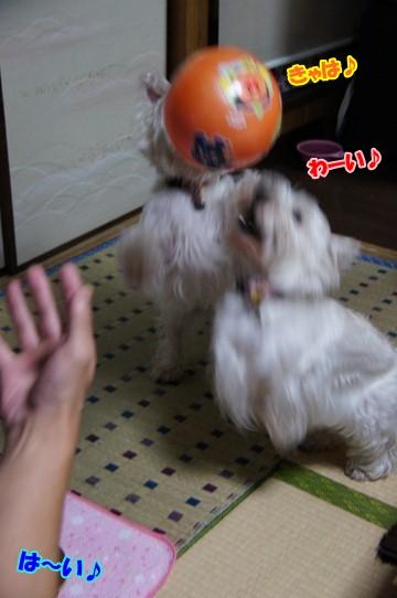 ball8