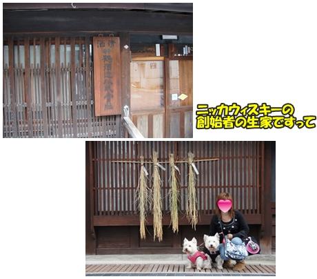 takehara5
