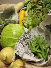 今週の野菜達