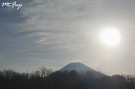 富士山・・