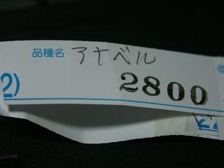 10may13085.jpg