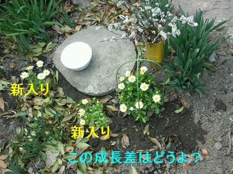 11apr02014.jpg