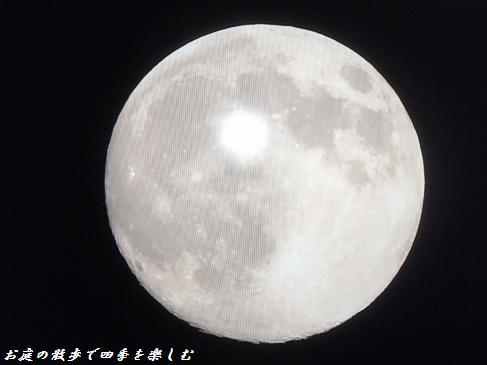 jyuugoya6.jpg