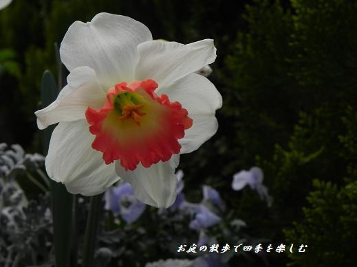 makuro9.jpg
