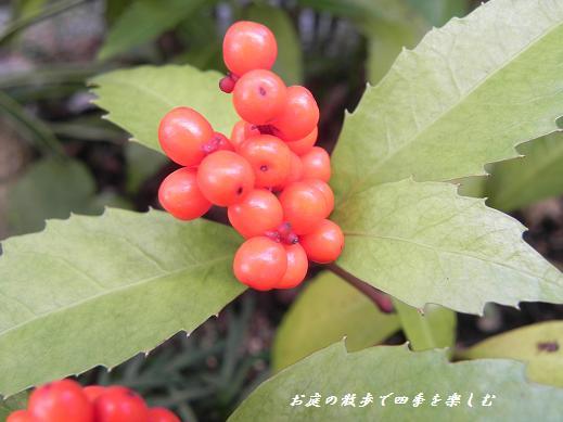 senryou12.jpg