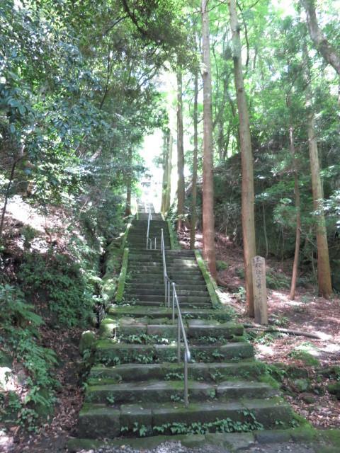 醍醐寺28