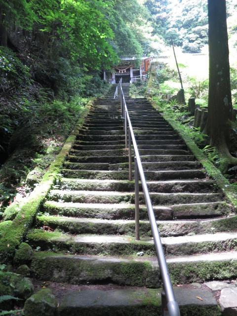 醍醐寺29