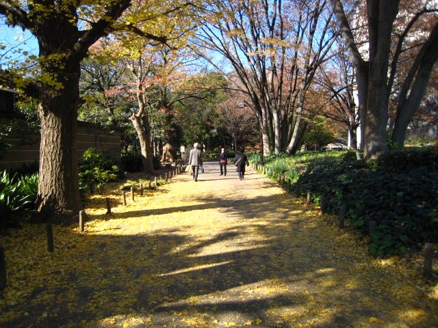 tokyohigaeri