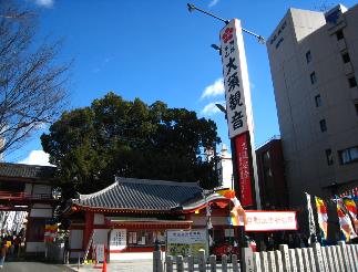 oosukannon1