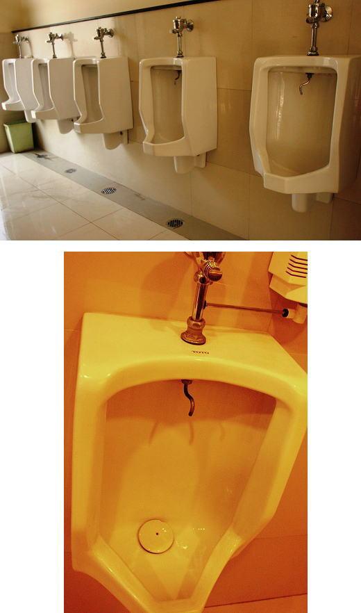 トイレ事情ブログサイズ