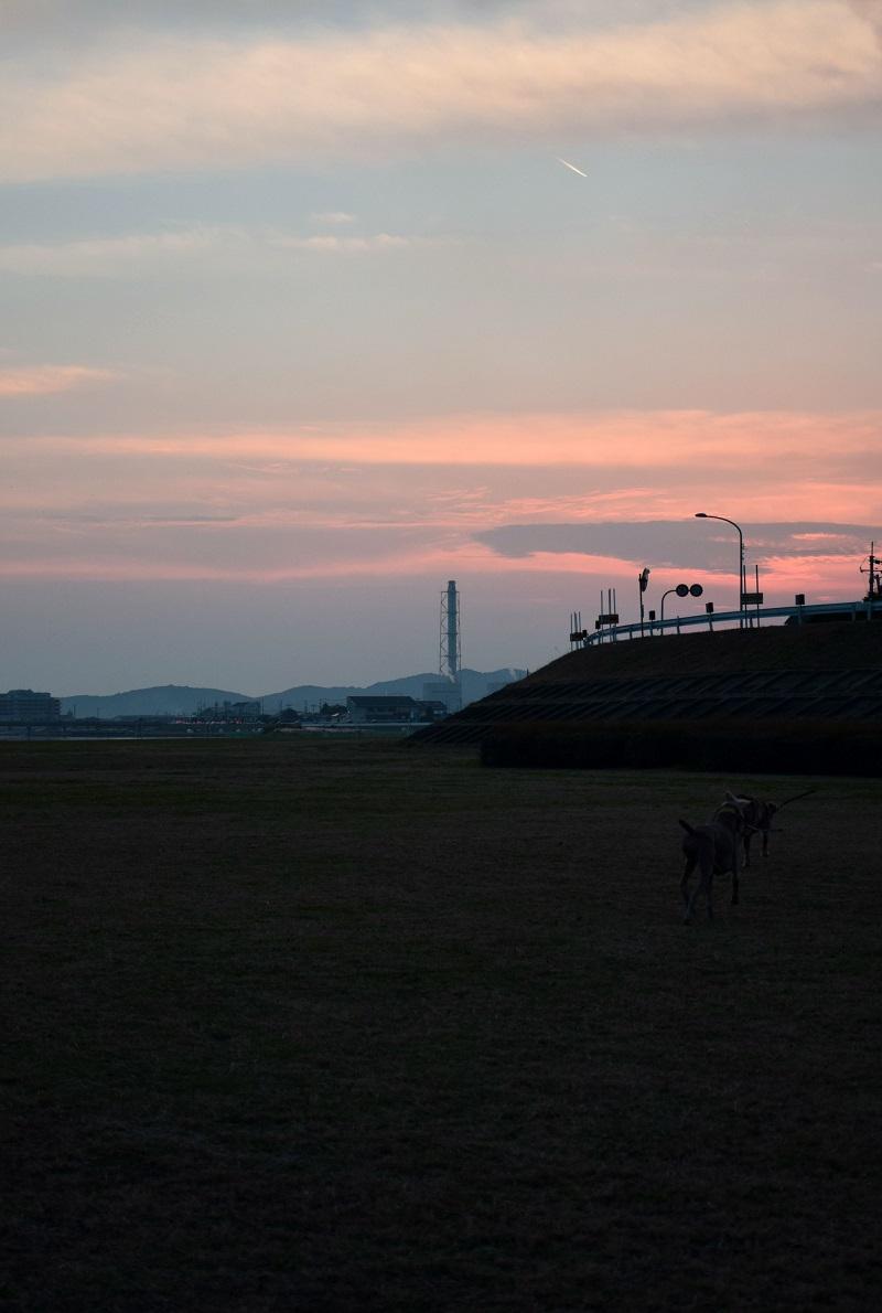 20141124006.jpg