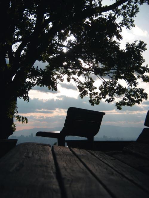 ベンチと夕景