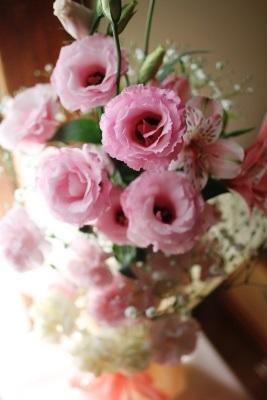 flowers02-20131209.jpg
