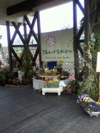 miharu4_20100424205455.jpg